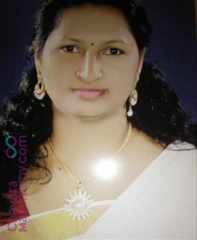 Widow Matrimony  Bride user ID: siljakms