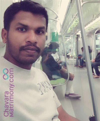 Qatar Groom user ID: CAGY457587
