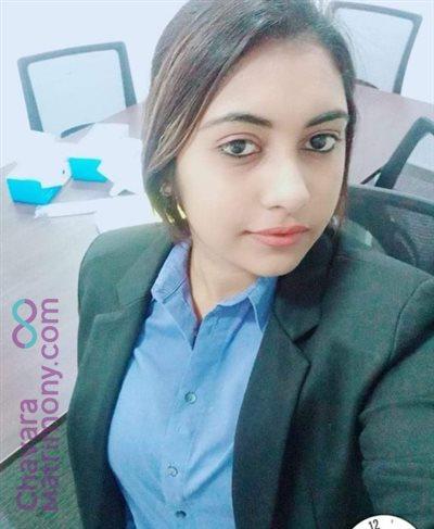 Sales Professional Matrimony  Bride user ID: Amalin442