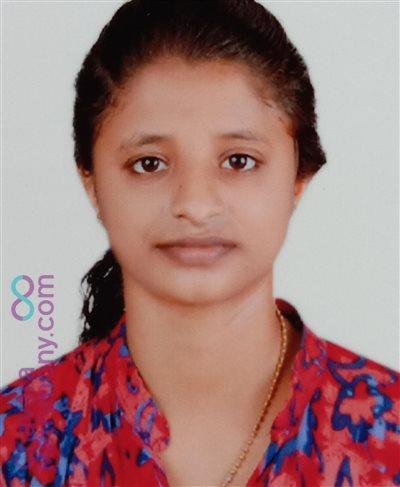 Calicut Diocese Bride user ID: Shibi1122