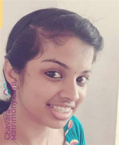 Kattappana Bride user ID: JismiJose3496